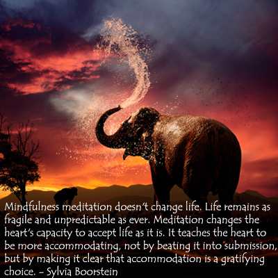 mindfulness-meditation-elephant