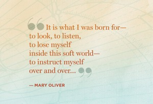 quotes-kickstart-change-mary-oliver-600x411