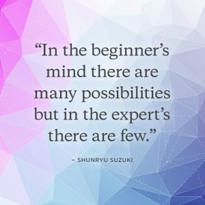 700x700-beginners-mind
